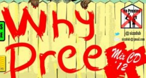 "Caribbean Music At It's Finest ""SizzDub Presents : Why Pree?"""